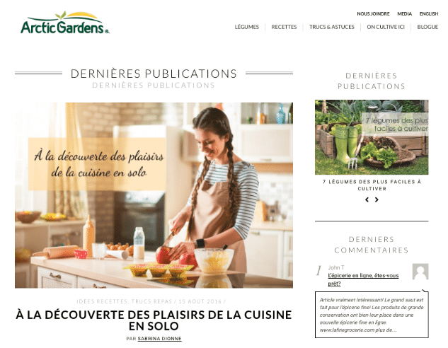 arctic gardens marketing de contenu